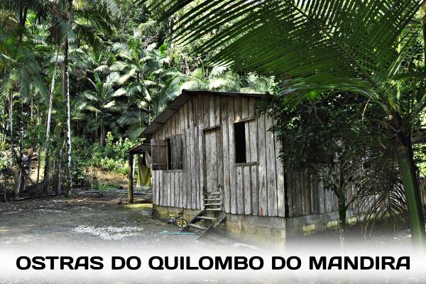 Conheça a comunidade quilombola que fez do manejo da ostra um exemplo de sustentabilidade para todo o mundo.